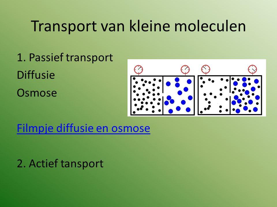 Transport van kleine moleculen 1. Passief transport Diffusie Osmose Filmpje diffusie en osmose 2. Actief tansport