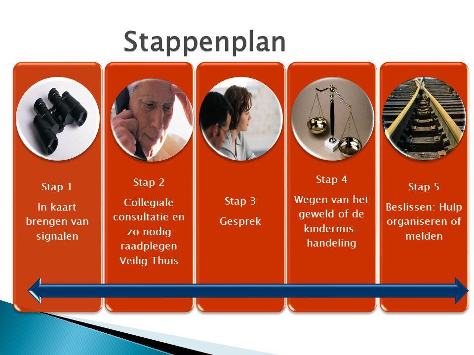 Stap 1 In kaart brengen van signalen Stap 2 Collegiale consultatie en zo nodig raadplegen Veilig Thuis Stap 3 Gesprek Stap 4 Wegen van het geweld of d