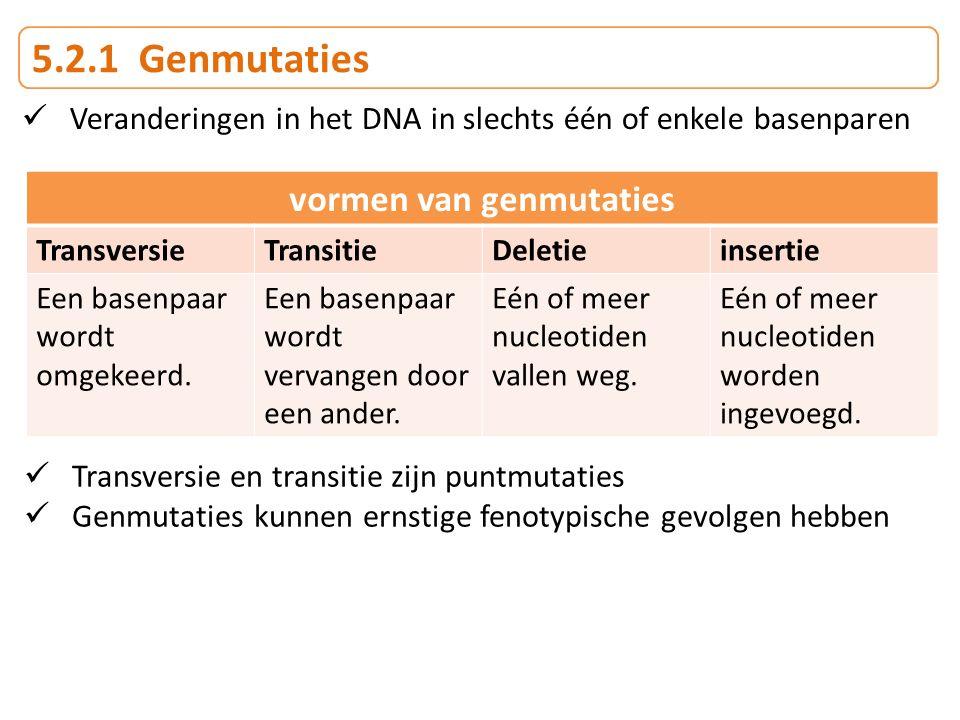 5.2.1 Genmutaties vormen van genmutaties TransversieTransitieDeletieinsertie Een basenpaar wordt omgekeerd. Een basenpaar wordt vervangen door een and