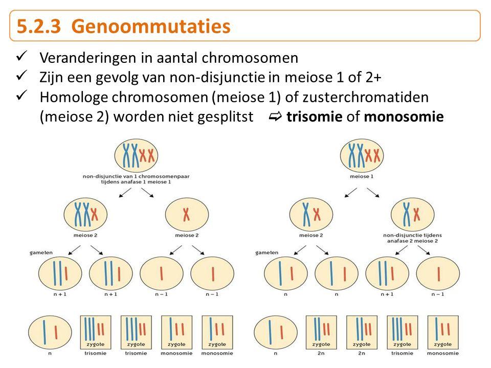 5.2.3 Genoommutaties Veranderingen in aantal chromosomen Zijn een gevolg van non-disjunctie in meiose 1 of 2+ Homologe chromosomen (meiose 1) of zuste