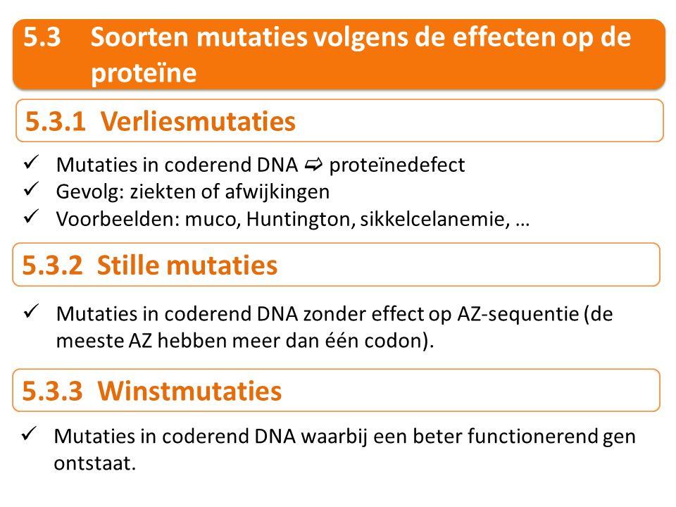 5.3Soorten mutaties volgens de effecten op de proteïne 5.3.1 Verliesmutaties Mutaties in coderend DNA  proteïnedefect Gevolg: ziekten of afwijkingen