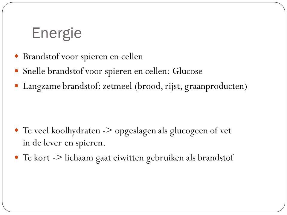 Energie Brandstof voor spieren en cellen Snelle brandstof voor spieren en cellen: Glucose Langzame brandstof: zetmeel (brood, rijst, graanproducten) T