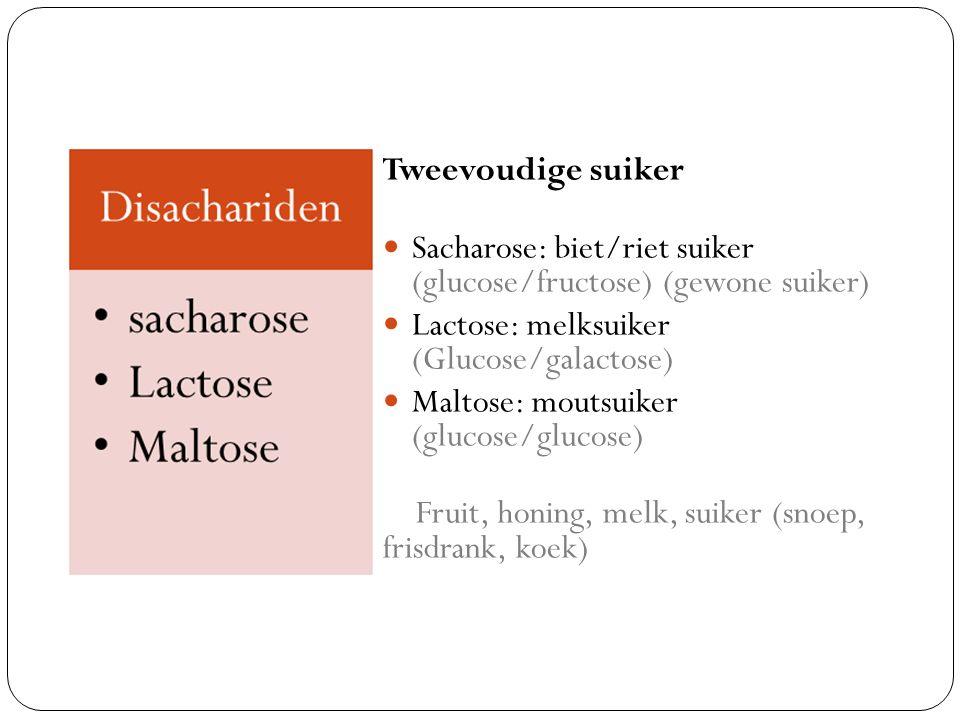 Tweevoudige suiker Sacharose: biet/riet suiker (glucose/fructose) (gewone suiker) Lactose: melksuiker (Glucose/galactose) Maltose: moutsuiker (glucose