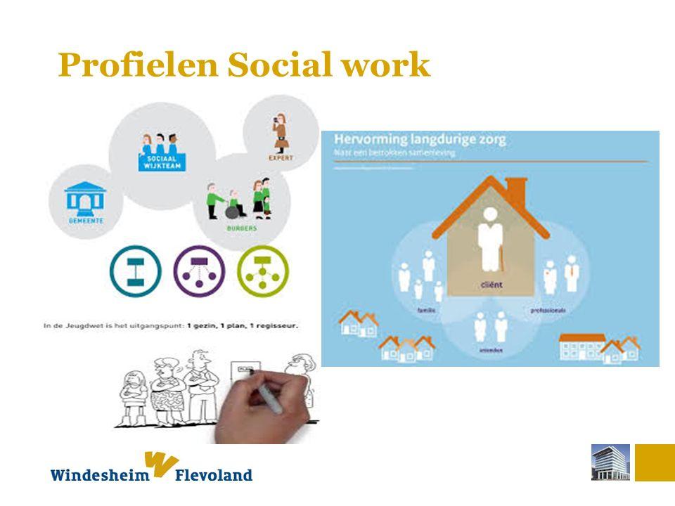 Profielen Social work