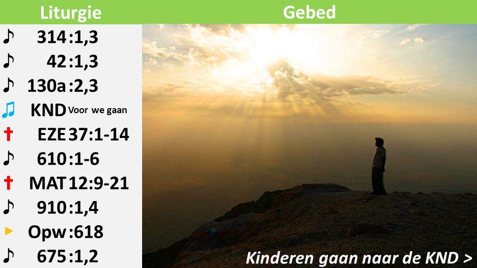 Liturgie ♪ 314:1,3 ♪ 42:1,3 ♪ 130a:2,3 ♫ KND Voor we gaan ✝ EZE37:1-14 ♪ 610:1-6 ✝ MAT12:9-21 ♪ 910:1,4 ▶ Opw:618 ♪ 675:1,2 Kinderen gaan naar de KND > Gebed