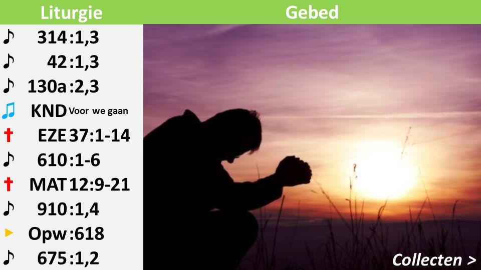 Liturgie ♪ 314:1,3 ♪ 42:1,3 ♪ 130a:2,3 ♫ KND Voor we gaan ✝ EZE37:1-14 ♪ 610:1-6 ✝ MAT12:9-21 ♪ 910:1,4 ▶ Opw:618 ♪ 675:1,2 Collecten > Gebed