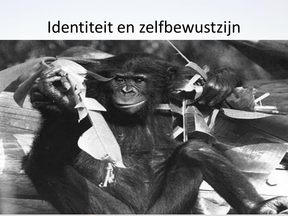Identiteit en zelfbewustzijn