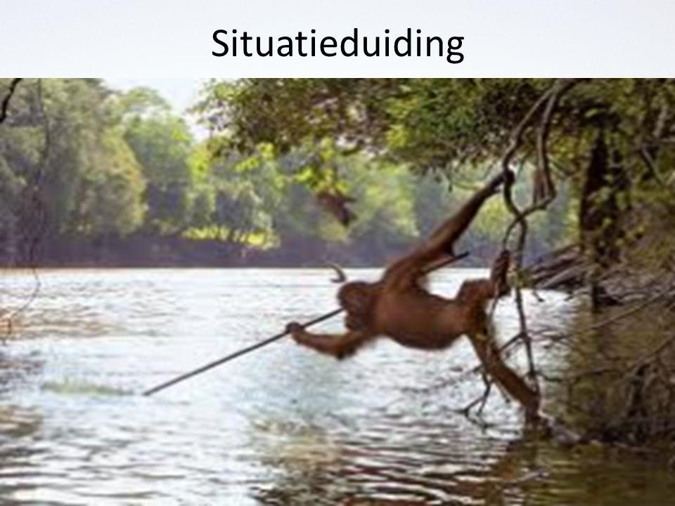 Situatieduiding