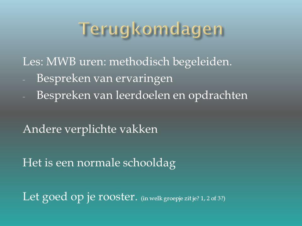 Les: MWB uren: methodisch begeleiden.