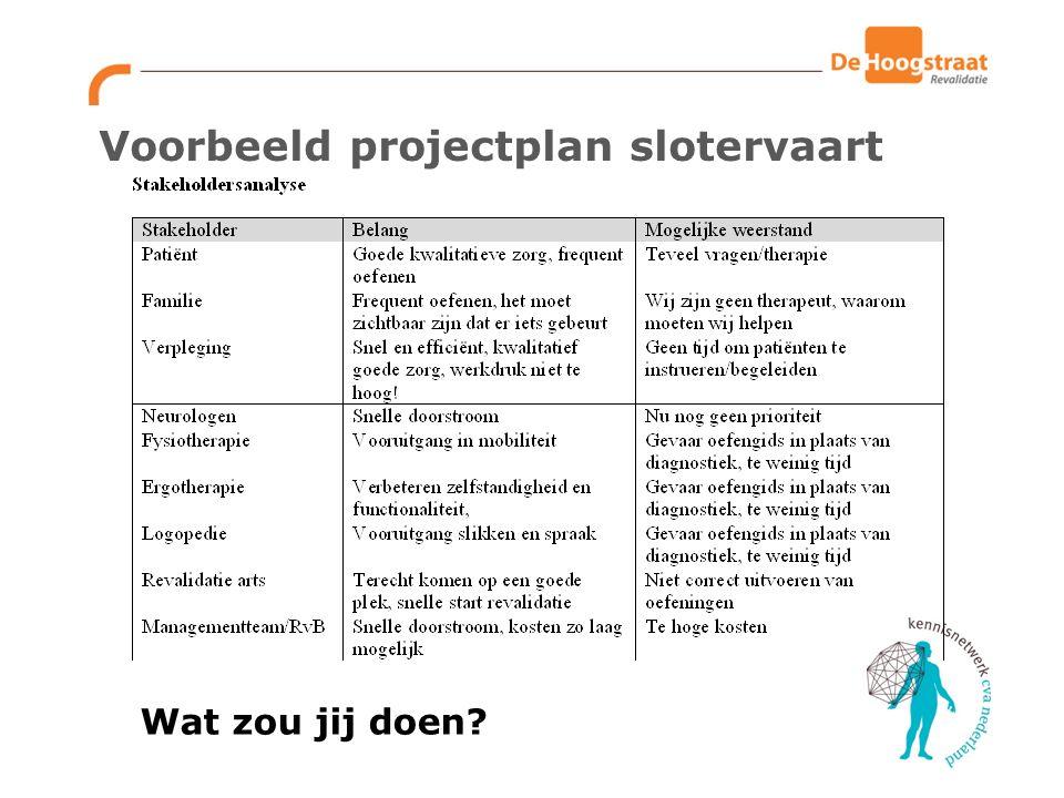 Voorbeeld projectplan slotervaart Wat zou jij doen?