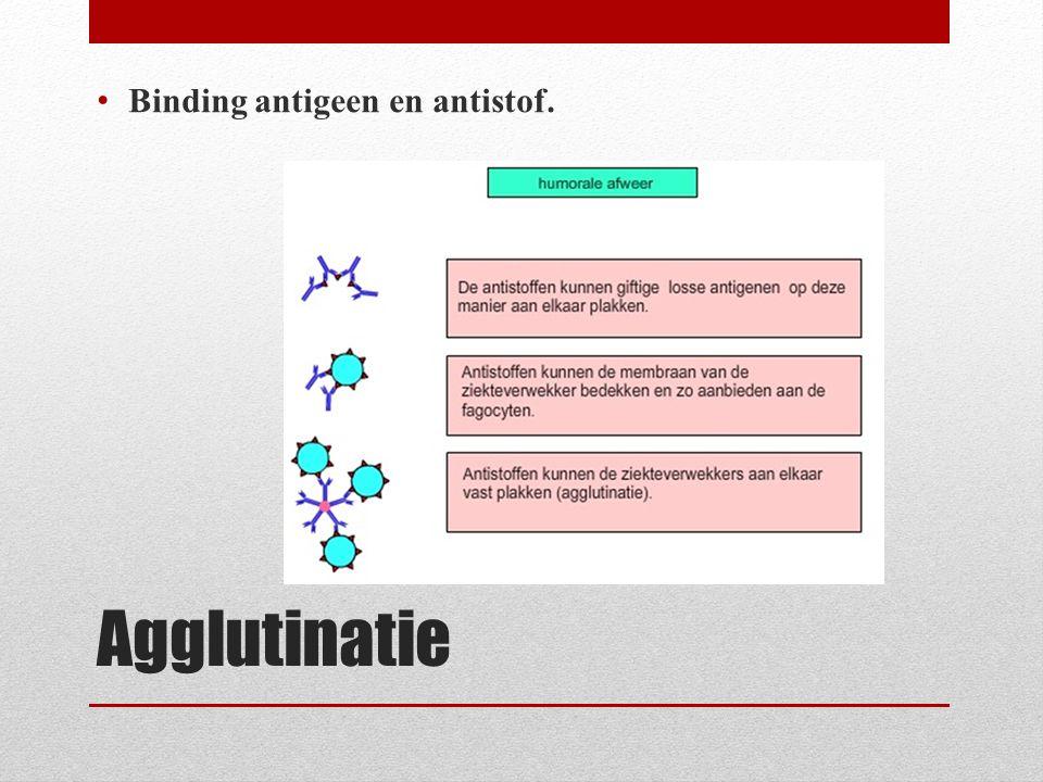 Agglutinatie Binding antigeen en antistof.