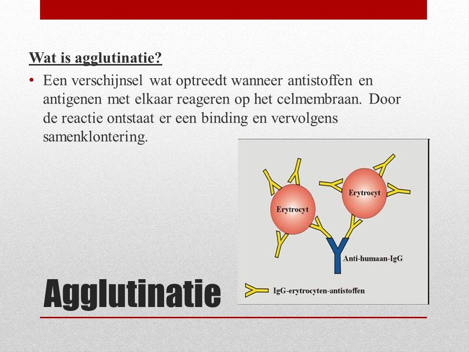 Agglutinatie Wat is agglutinatie? Een verschijnsel wat optreedt wanneer antistoffen en antigenen met elkaar reageren op het celmembraan. Door de react