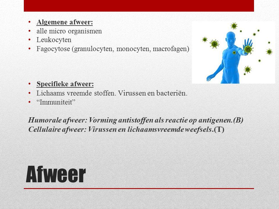Afweer Algemene afweer: alle micro organismen Leukocyten Fagocytose (granulocyten, monocyten, macrofagen) Specifieke afweer: Lichaams vreemde stoffen.