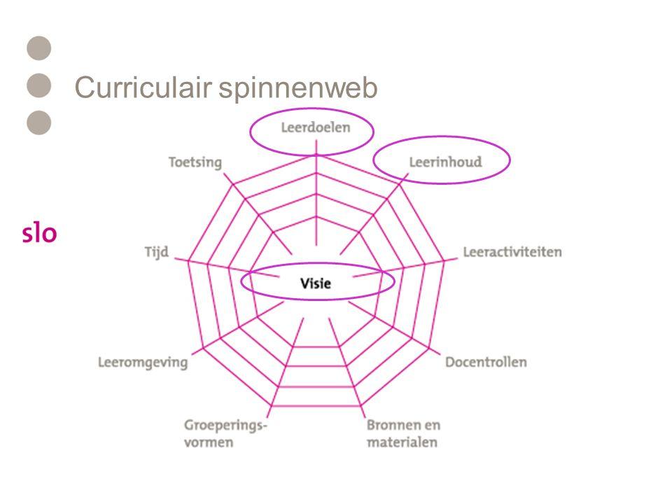 Curriculair spinnenweb