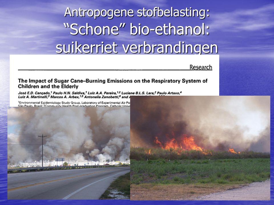 """Antropogene stofbelasting: """"Schone"""" bio-ethanol: suikerriet verbrandingen"""