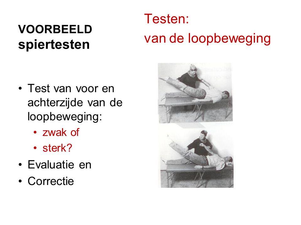VOORBEELD spiertesten Testen: van de loopbeweging Test van voor en achterzijde van de loopbeweging: zwak of sterk? Evaluatie en Correctie