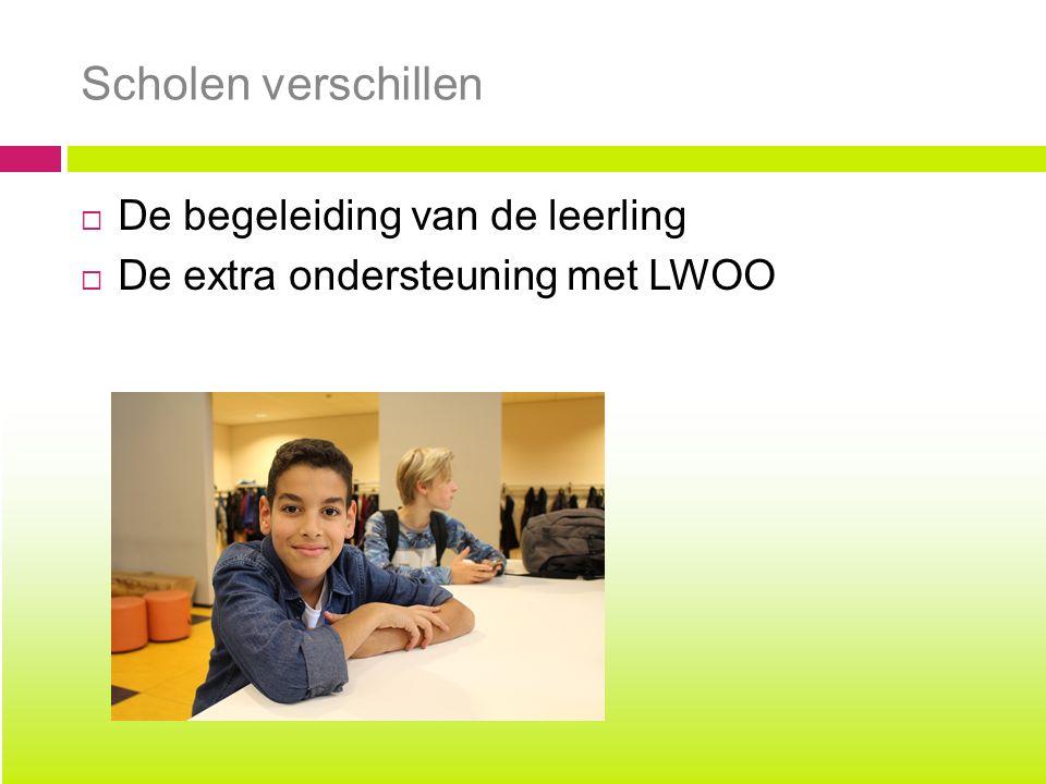 Scholen verschillen  De begeleiding van de leerling  De extra ondersteuning met LWOO