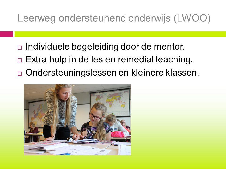Leerweg ondersteunend onderwijs (LWOO)  Individuele begeleiding door de mentor.  Extra hulp in de les en remedial teaching.  Ondersteuningslessen e