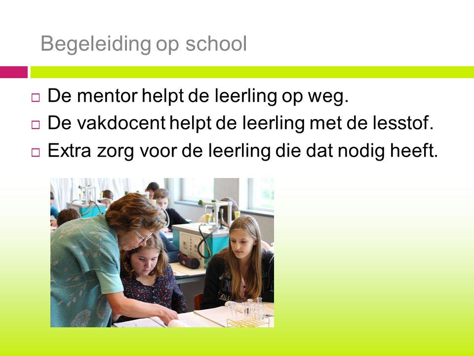 Begeleiding op school  De mentor helpt de leerling op weg.  De vakdocent helpt de leerling met de lesstof.  Extra zorg voor de leerling die dat nod