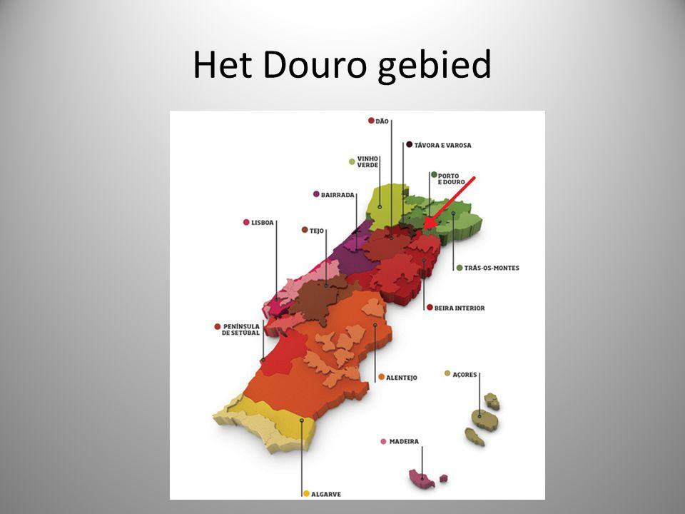 Het Douro gebied