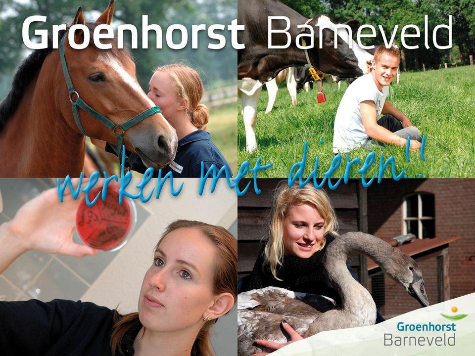Alles over dierverzorging leer je in Barneveld