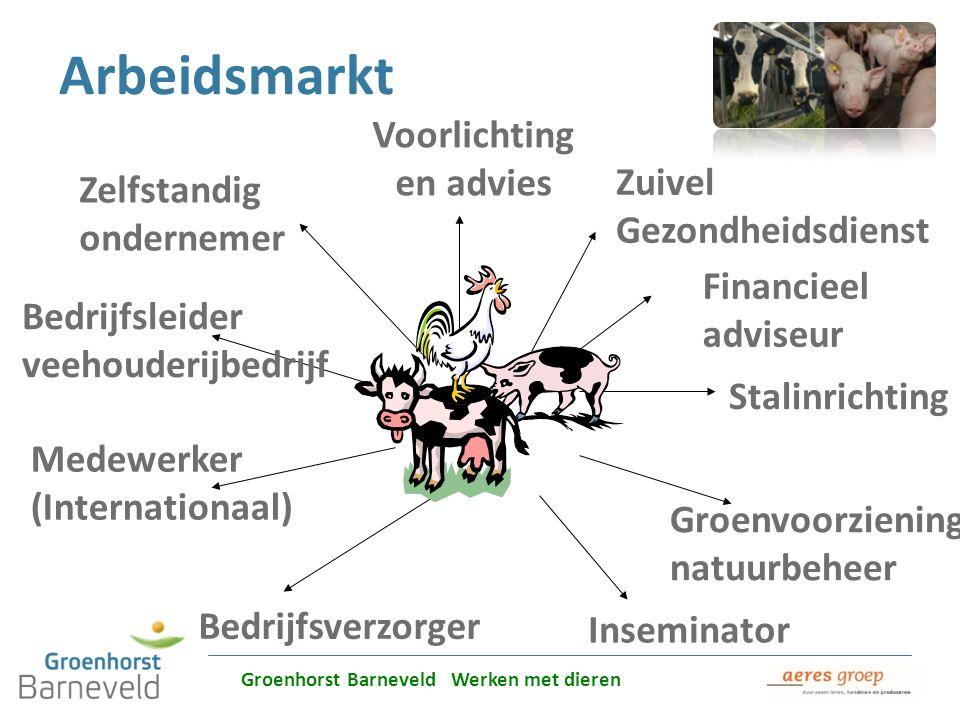 Alles over dierverzorging leer je in Barneveld Arbeidsmarkt Bedrijfsverzorger Groenvoorziening natuurbeheer Zuivel Gezondheidsdienst Financieel advise