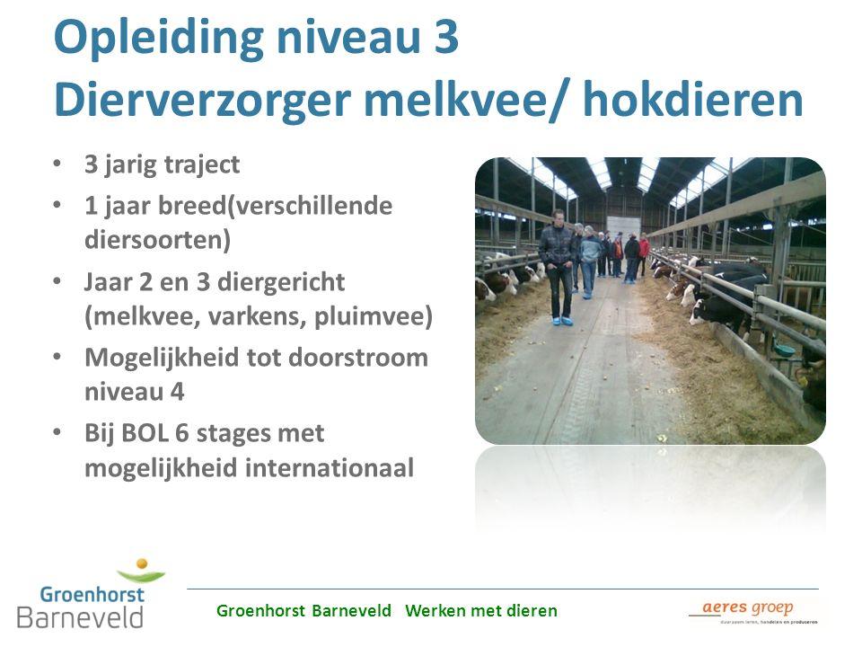 Alles over dierverzorging leer je in Barneveld Opleiding niveau 3 Dierverzorger melkvee/ hokdieren 3 jarig traject 1 jaar breed(verschillende diersoor