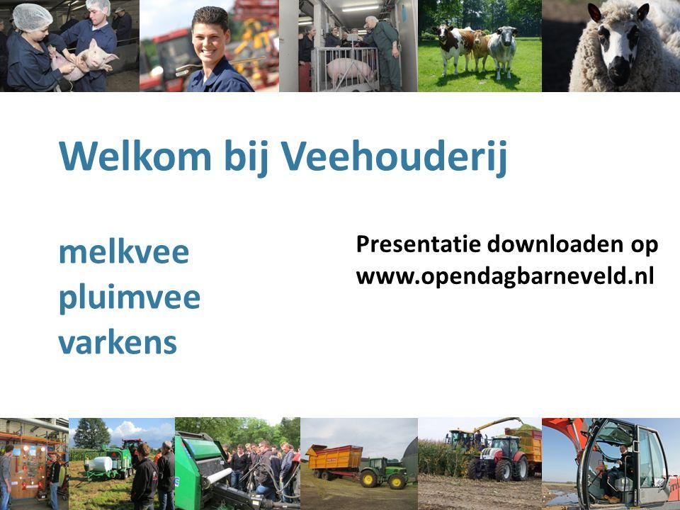 Welkom bij Veehouderij melkvee pluimvee varkens Presentatie downloaden op www.opendagbarneveld.nl
