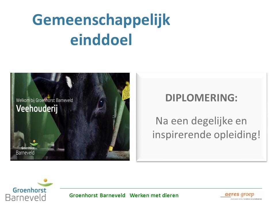 Alles over dierverzorging leer je in Barneveld Gemeenschappelijk einddoel DIPLOMERING: Na een degelijke en inspirerende opleiding! DIPLOMERING: Na een