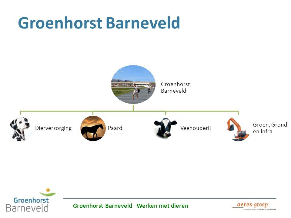 Alles over dierverzorging leer je in Barneveld Groenhorst Barneveld DierverzorgingPaardVeehouderij Groen, Grond en Infra Groenhorst Barneveld Groenhor