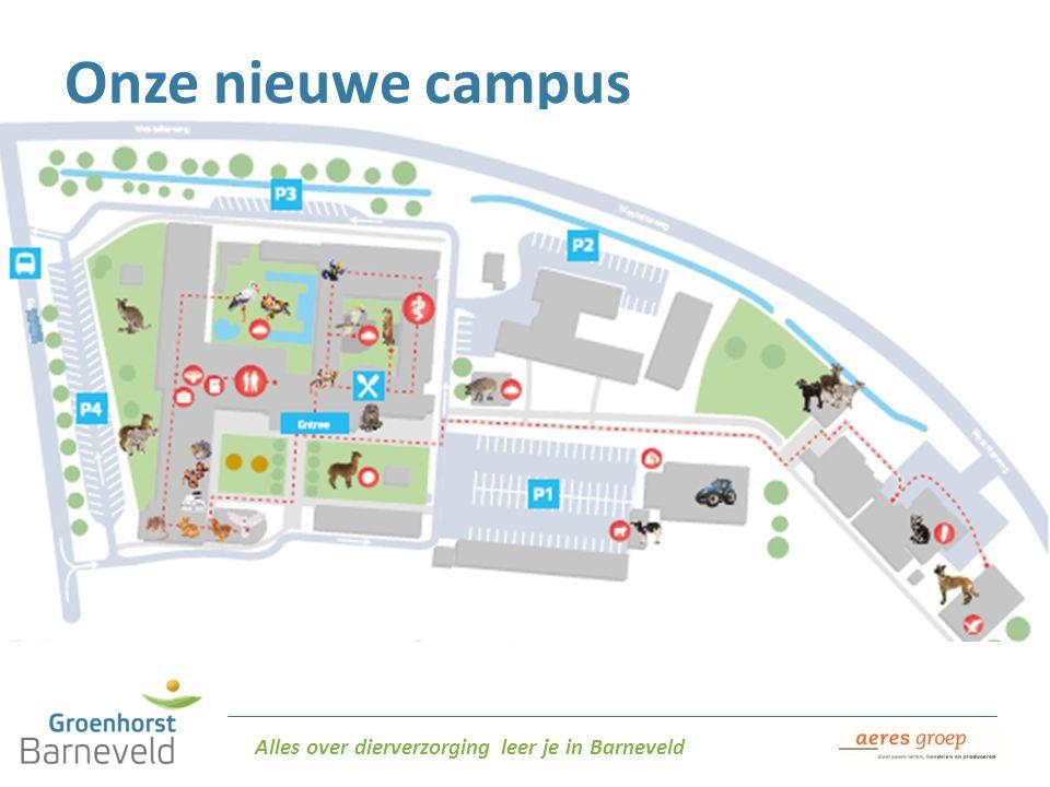 Alles over dierverzorging leer je in Barneveld Onze nieuwe campus