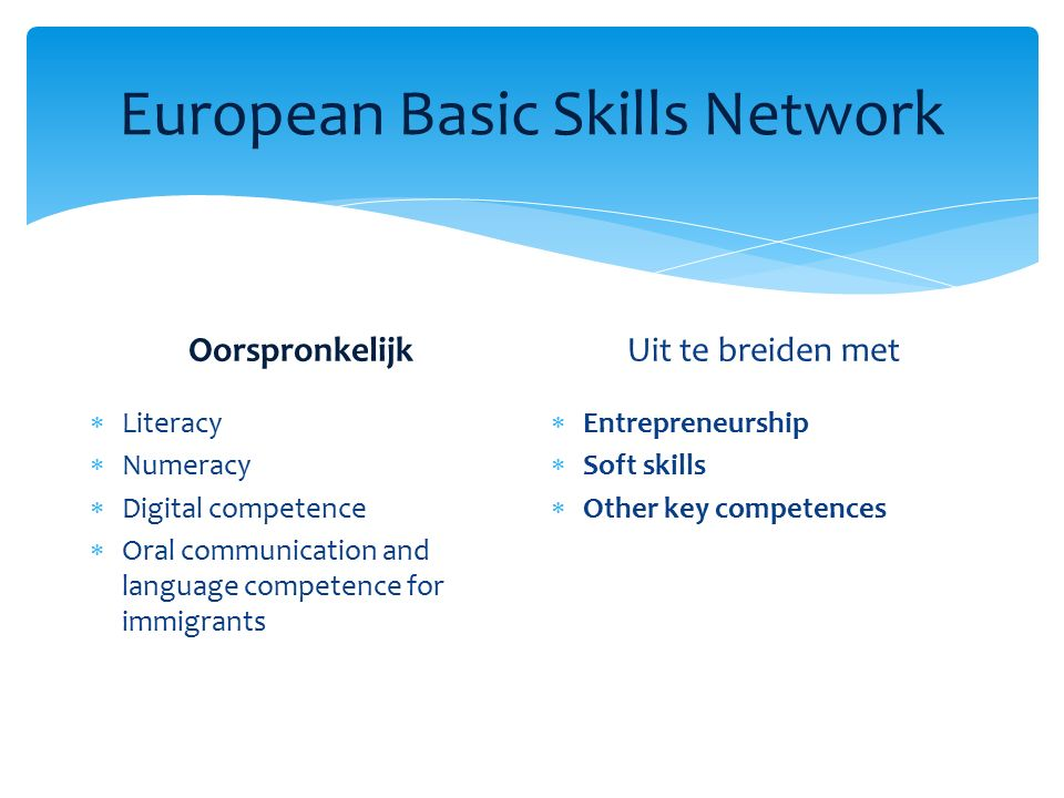 European Basic Skills Network Oorspronkelijk  Literacy  Numeracy  Digital competence  Oral communication and language competence for immigrants Uit te breiden met  Entrepreneurship  Soft skills  Other key competences