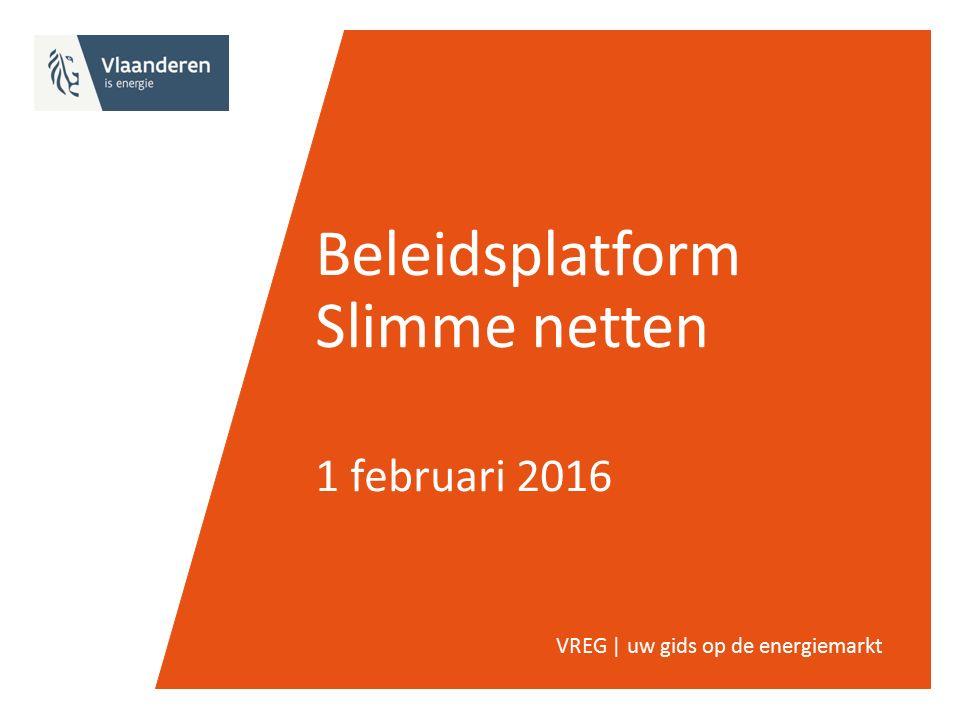 Beleidsplatform Slimme netten 1 februari 2016 VREG | uw gids op de energiemarkt