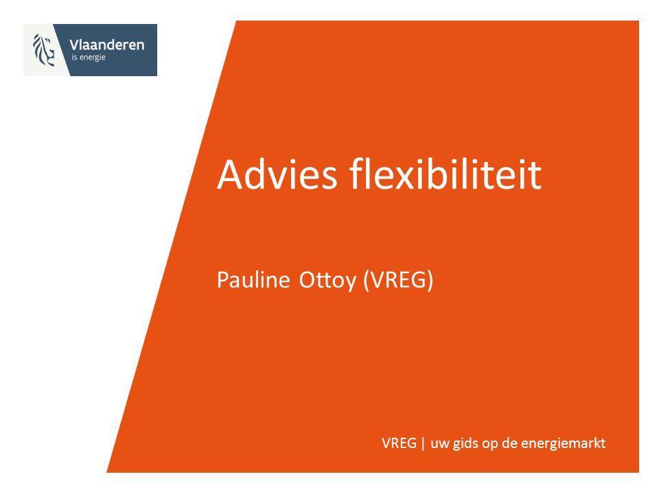 Advies flexibiliteit Pauline Ottoy (VREG) VREG | uw gids op de energiemarkt