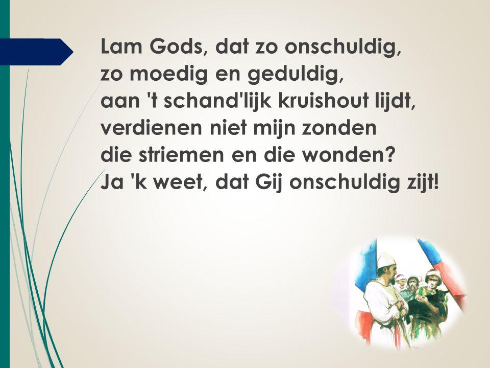 Lam Gods, dat zo onschuldig, zo moedig en geduldig, aan t schand lijk kruishout lijdt, verdienen niet mijn zonden die striemen en die wonden.