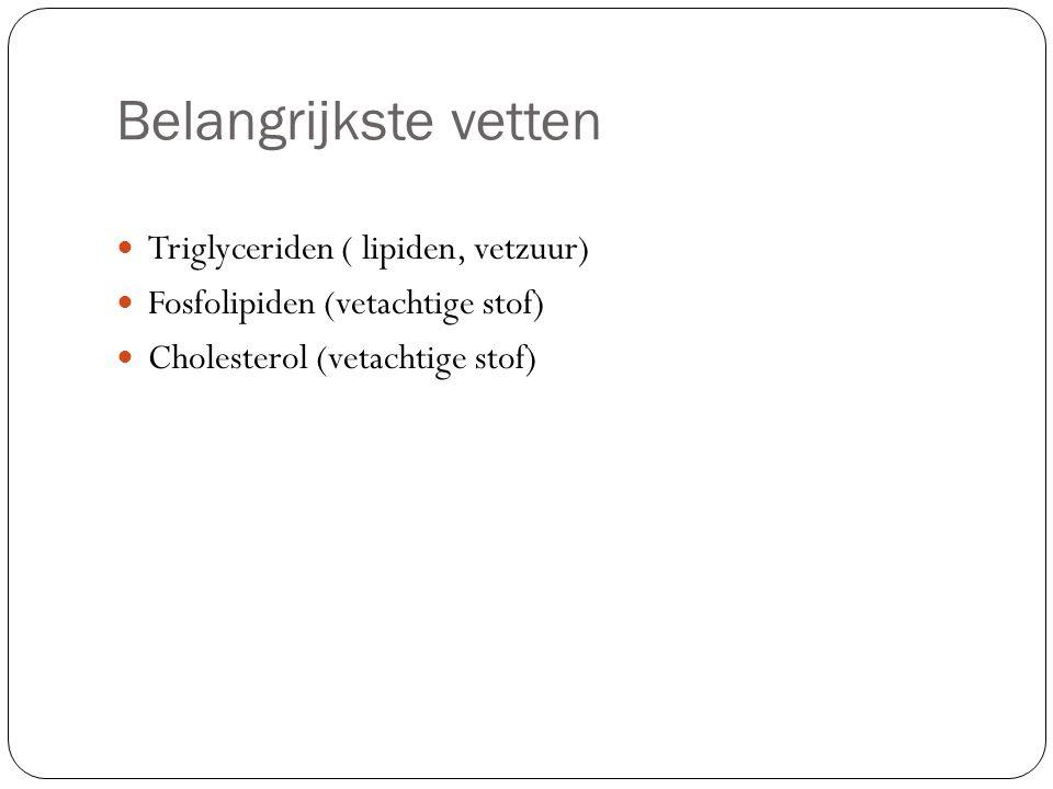 Belangrijkste vetten Triglyceriden ( lipiden, vetzuur) Fosfolipiden (vetachtige stof) Cholesterol (vetachtige stof)