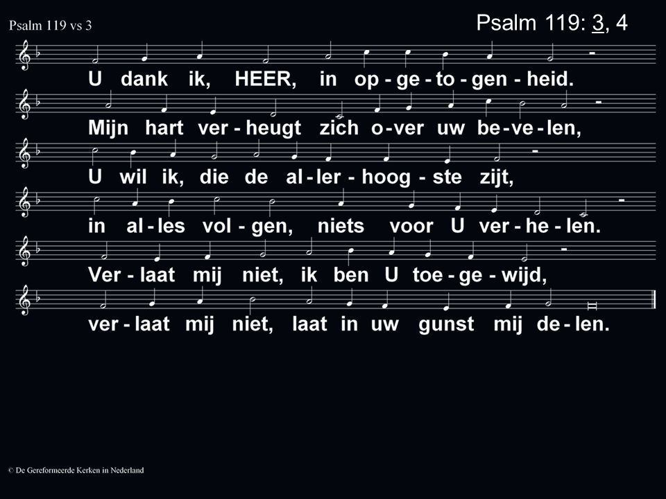 Psalm 119: 3, 4