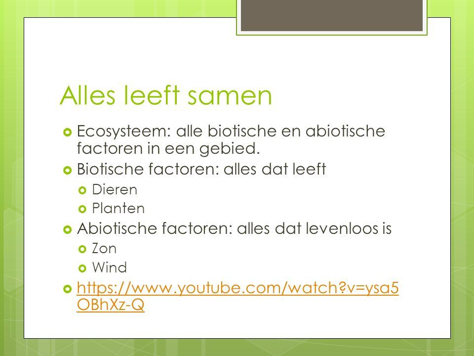 Alles leeft samen  Ecosysteem: alle biotische en abiotische factoren in een gebied.  Biotische factoren: alles dat leeft  Dieren  Planten  Abioti