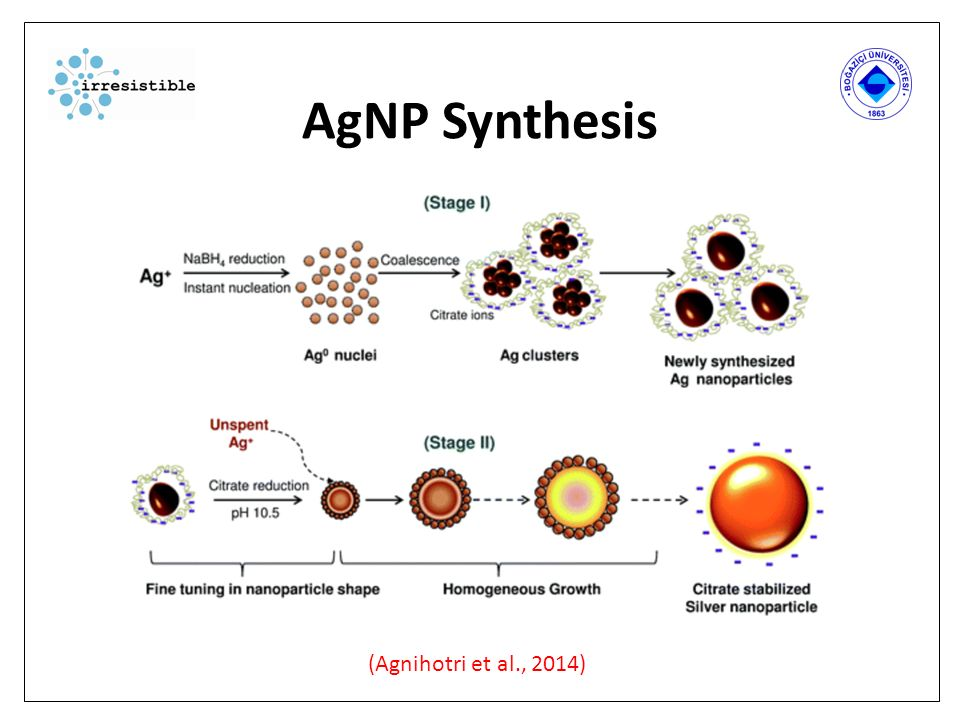 De Rol van Natriumcitraat bij de synthese van AgNP Door het toevoegen van natriumcitraat (Na 3 C 6 H 5 O 7 ), treedt een redoxreactie op, waarbij de zilverionen (Ag + ) gereduccerd worden tot Ag 0.
