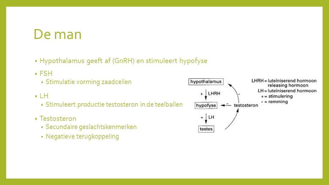 De man Hypothalamus geeft af (GnRH) en stimuleert hypofyse FSH Stimulatie vorming zaadcellen LH Stimuleert productie testosteron in de teelballen Testosteron Secundaire geslachtskenmerken Negatieve terugkoppeling