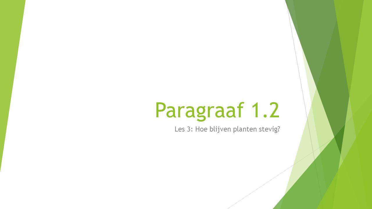 Paragraaf 1.2 Les 3: Hoe blijven planten stevig?