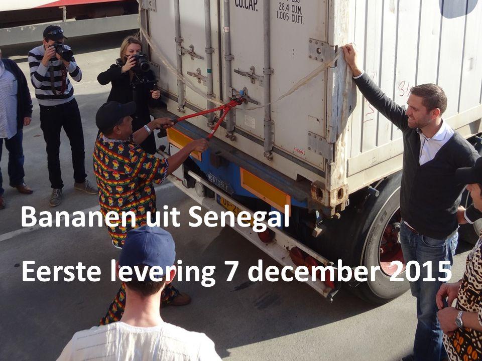 Beeld bananen - tevreden boeren Eerste levering 7 december 2015 Bananen uit Senegal