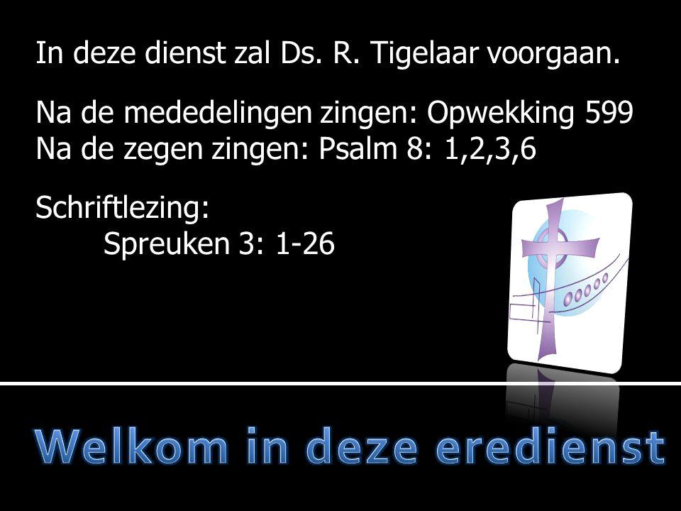 Mededelingen  Opwekking 599  Moment van stilte  Votum en zegengroet  Ps.