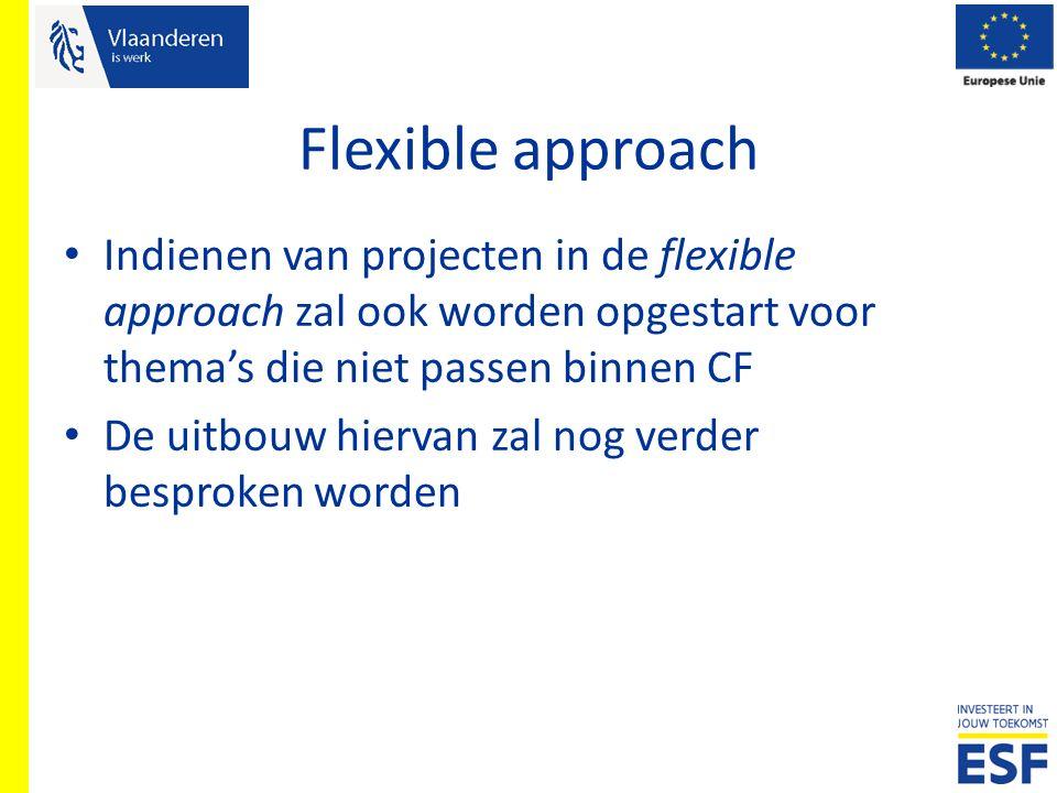 Flexible approach Indienen van projecten in de flexible approach zal ook worden opgestart voor thema's die niet passen binnen CF De uitbouw hiervan za