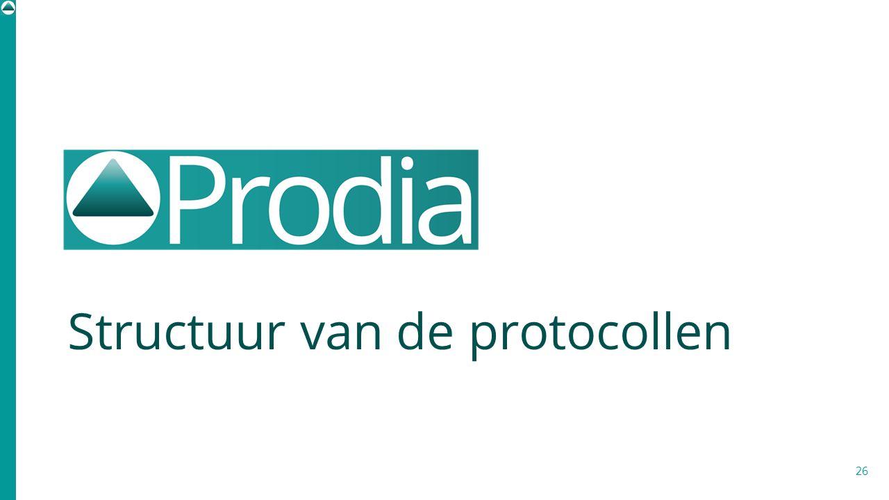 Structuur van de protocollen 26