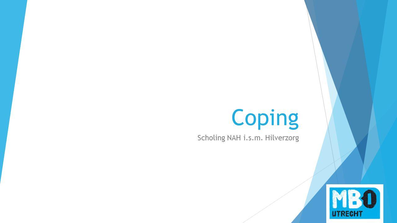 Coping Scholing NAH i.s.m. Hilverzorg