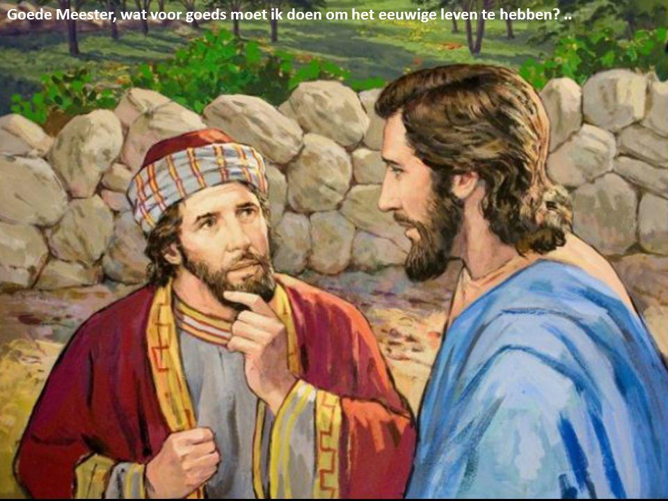 Goede Meester, wat voor goeds moet ik doen om het eeuwige leven te hebben ..