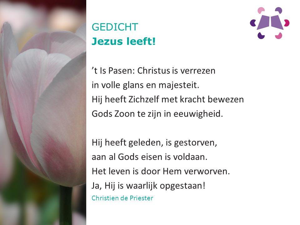 GEDICHT Jezus leeft. 't Is Pasen: Christus is verrezen in volle glans en majesteit.