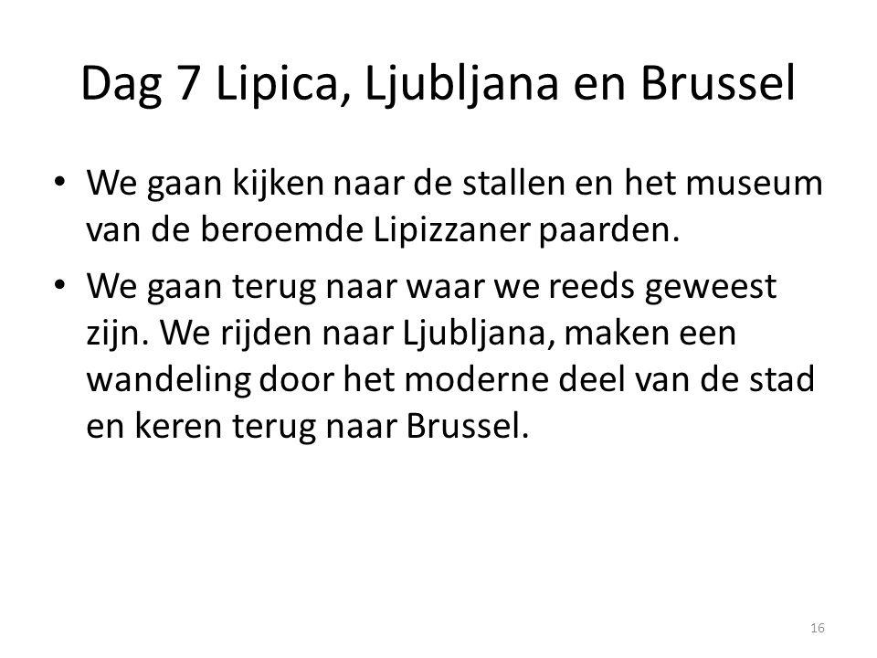 Dag 7 Lipica, Ljubljana en Brussel We gaan kijken naar de stallen en het museum van de beroemde Lipizzaner paarden. We gaan terug naar waar we reeds g