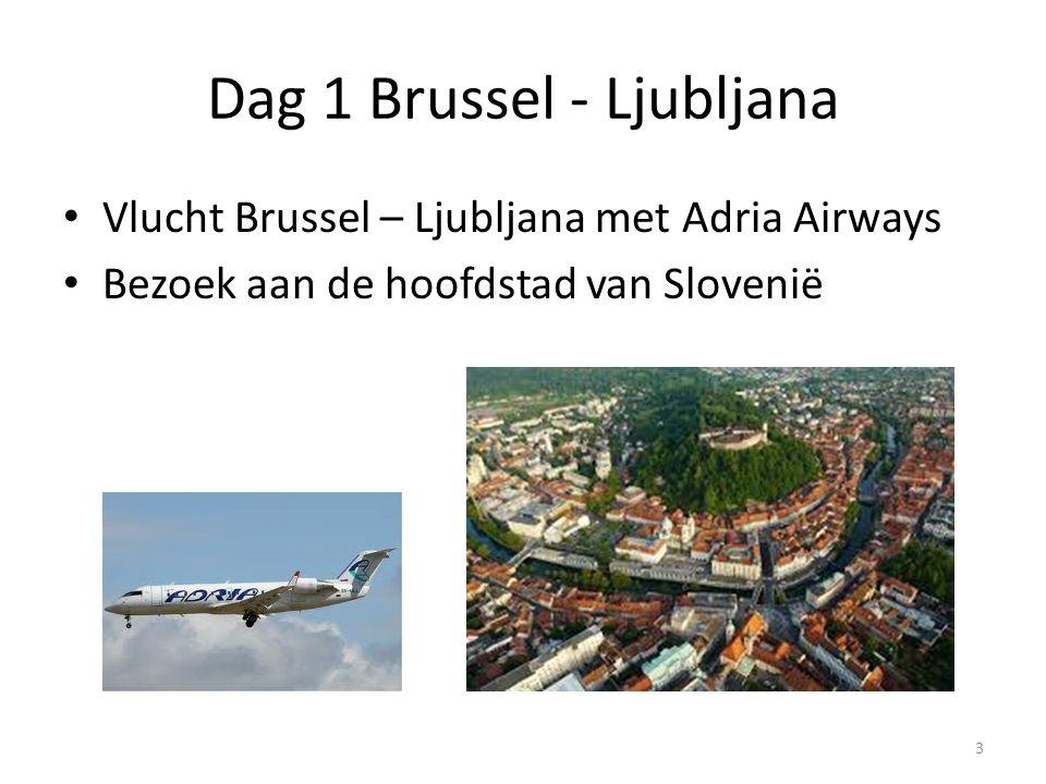 Dag 1 Brussel - Ljubljana Vlucht Brussel – Ljubljana met Adria Airways Bezoek aan de hoofdstad van Slovenië 3